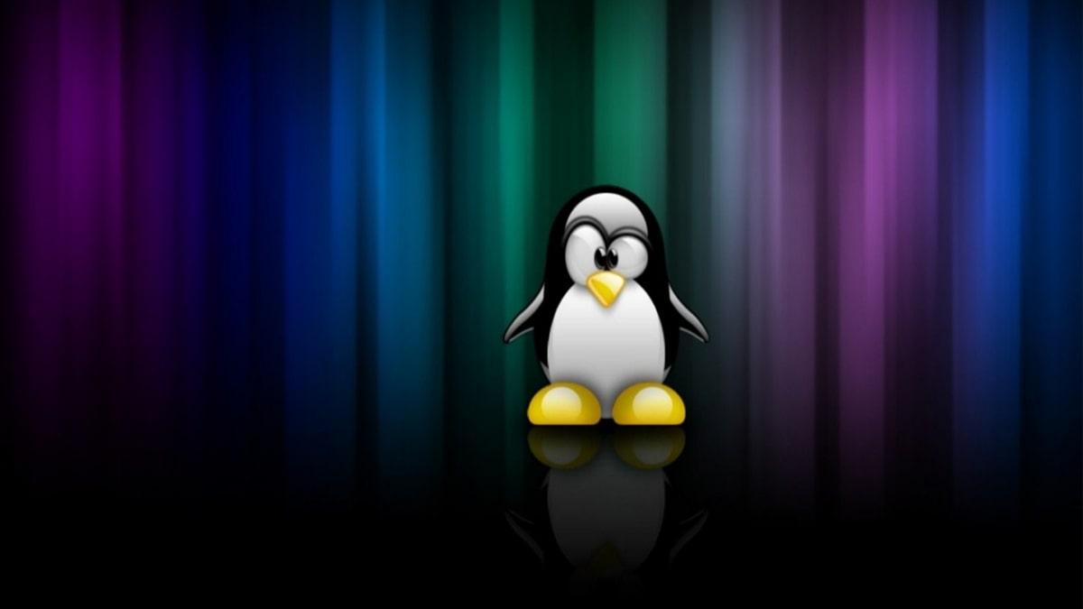 Onde o linux é mais utilizado? post thumbnail
